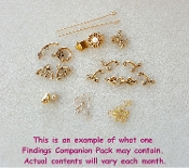*NEW* Findings Companion Pack Subscription